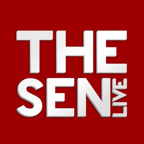 Logo Design   thesenlive.com
