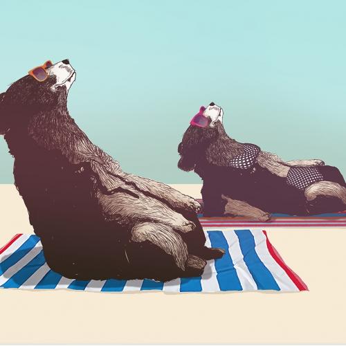bear summer