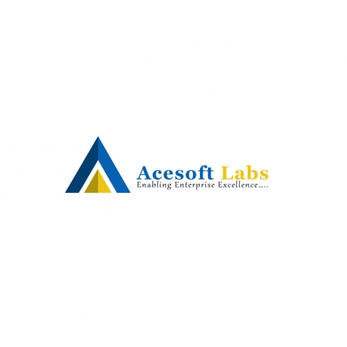Internet Software Business Logo