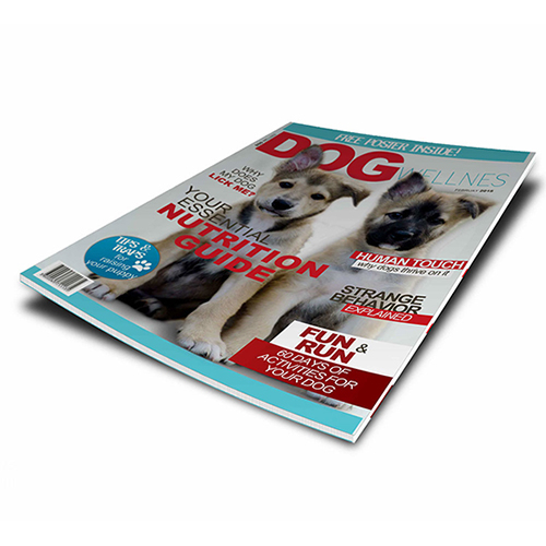 Mag Cover Design