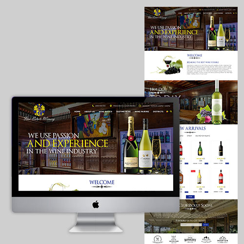 Retail Store Website