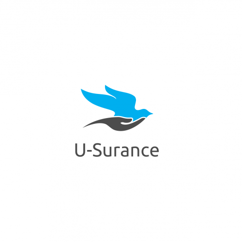 Online Insurance Logo Design