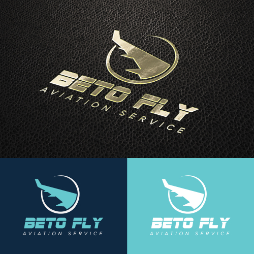 professional airline logo