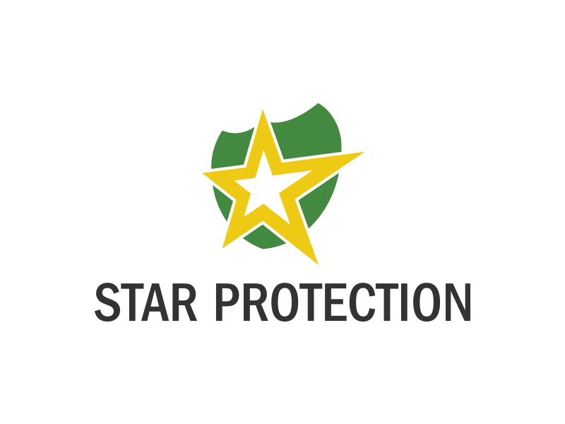Star Protection by Logic6  a perfect logo for Accounting & Financial