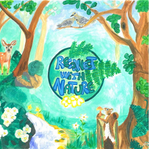 Forest Animals - Reconnect with Nature