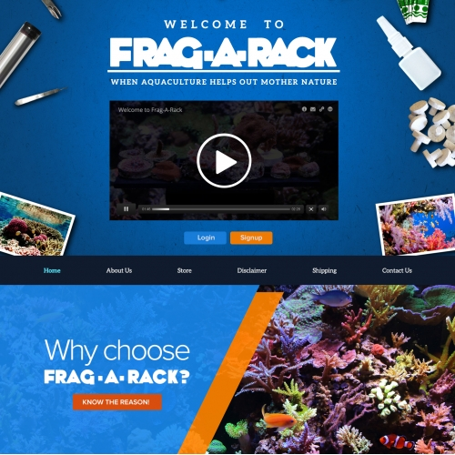 Frag-rack Landing Page Design