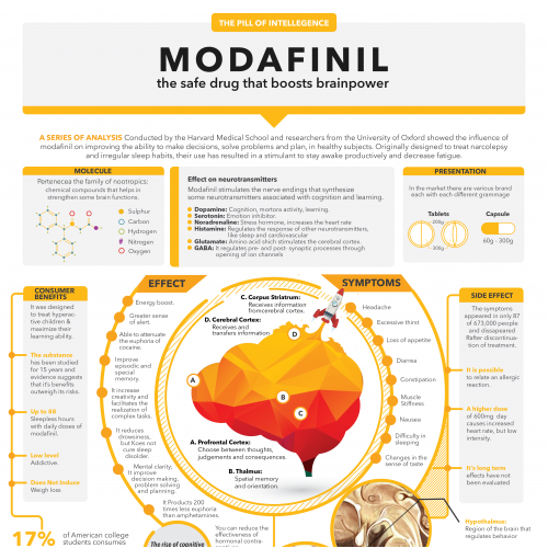 Modafinil Infographic