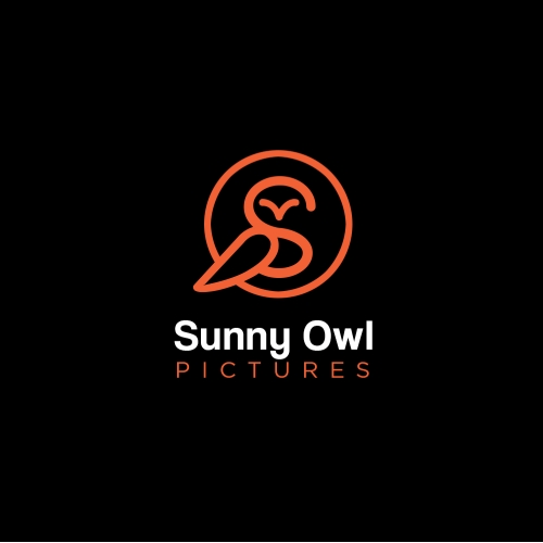 Sunny owl picture