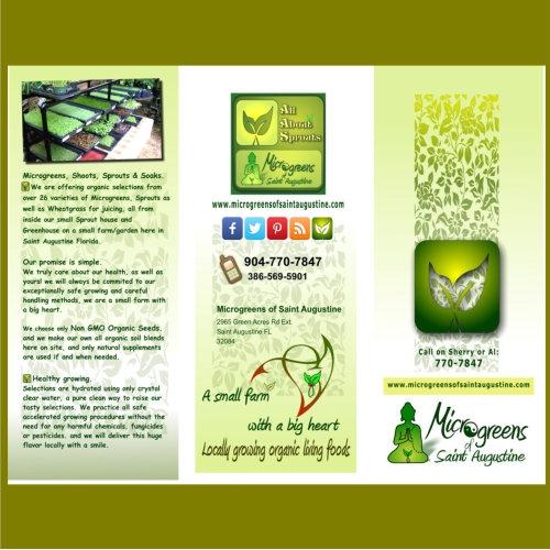 Micro green Flyer