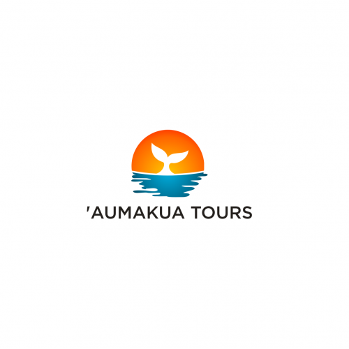 tourism companies
