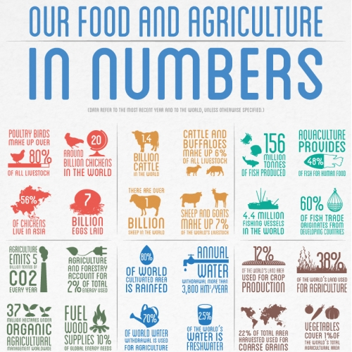 FAO - Our Food and Agriculture in numbers