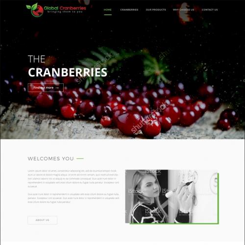 cranberries pty ltd