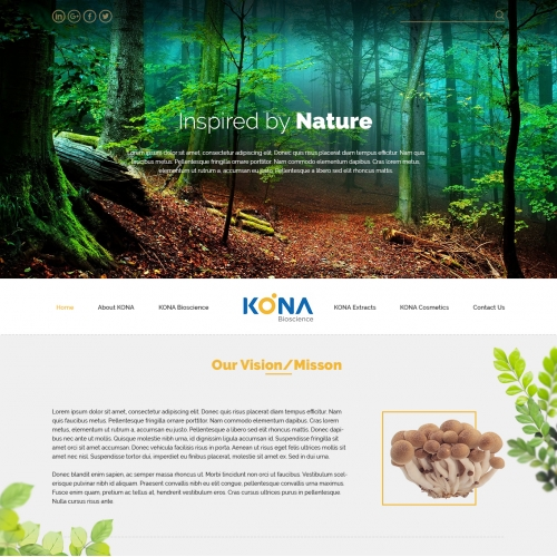 Kona - Website design