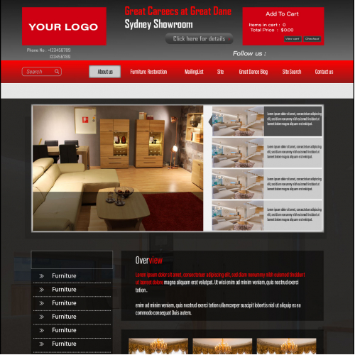 Professional  website design for your company