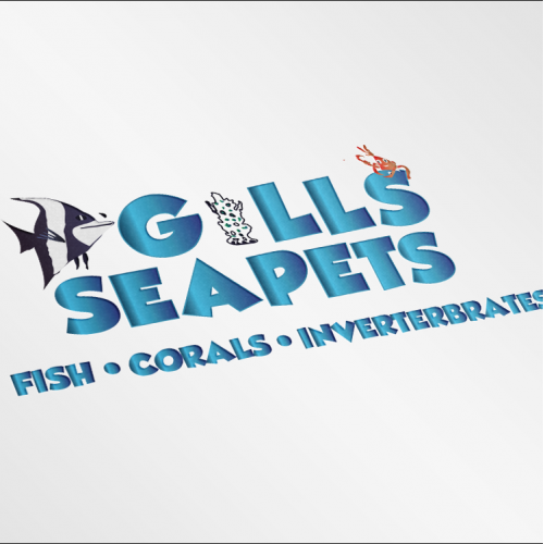 logo design fish
