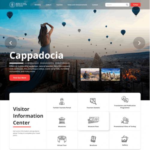 Government Web Design