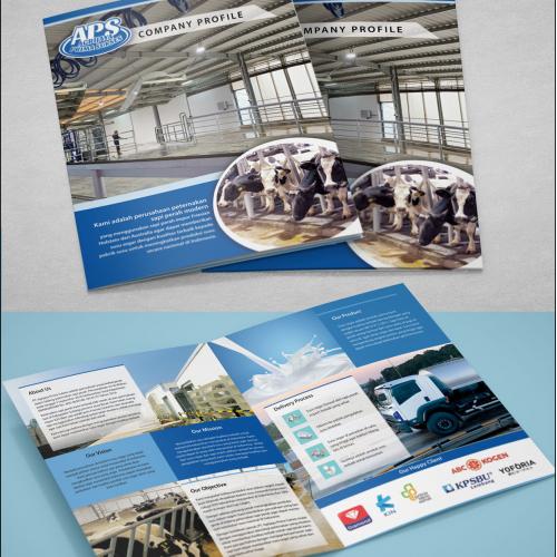 Company Profile APS
