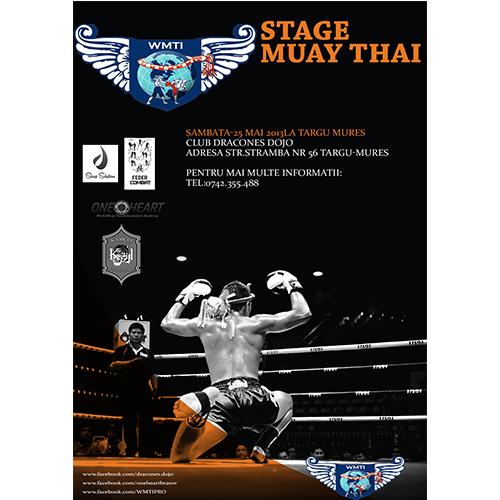 Muay Thai/Boxing Poster