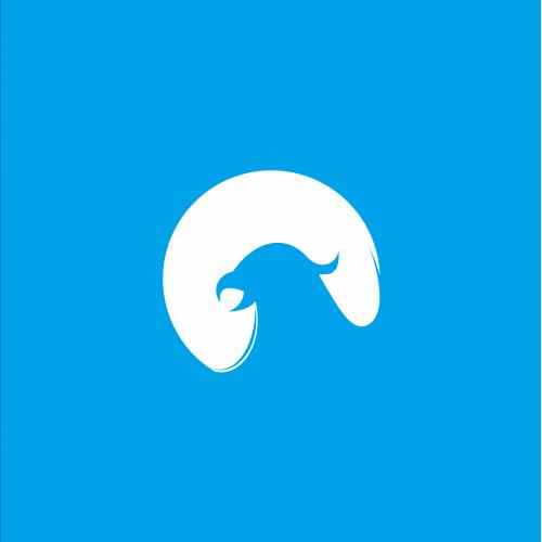 head falcon logo