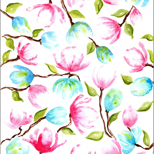 Blue and Pink Magnolia Flowers