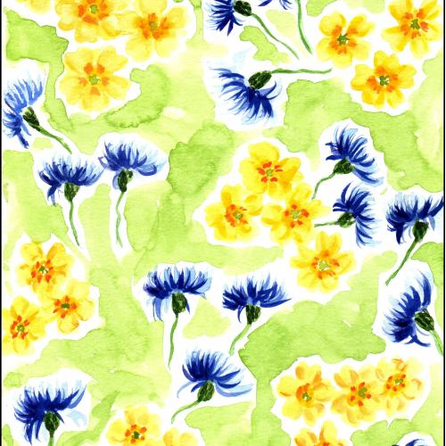 Cornflower and Primrose