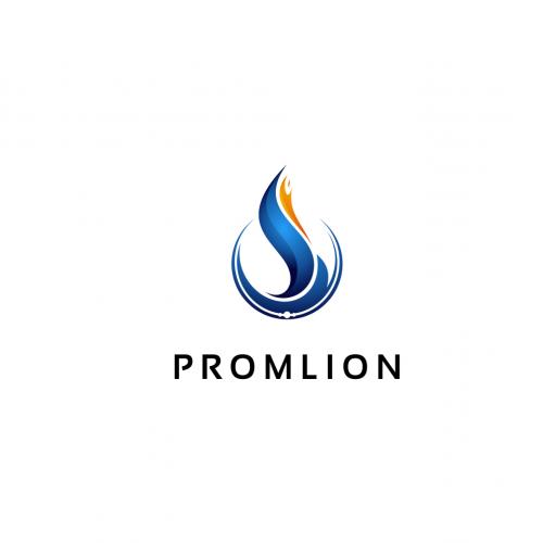 promolion logo