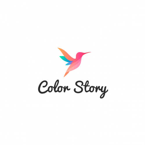 Color Story Logo design
