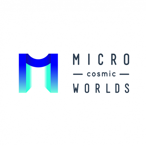 Logo design for VR Game