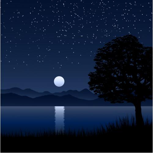 lake in starry night