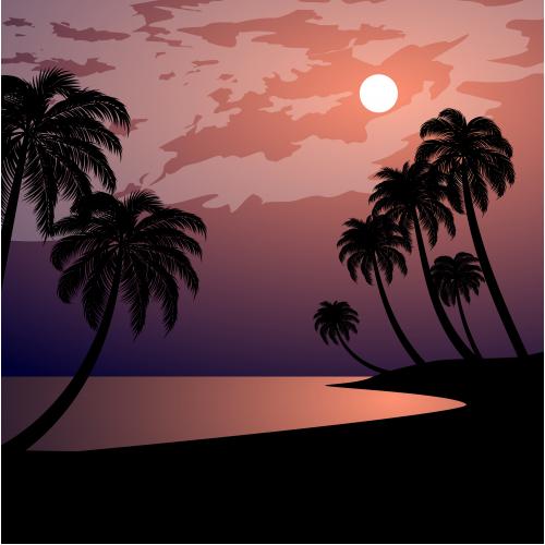 night at tropical beach