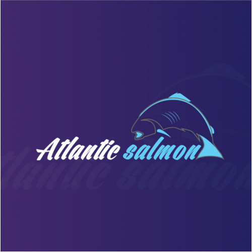 salmon fish logo