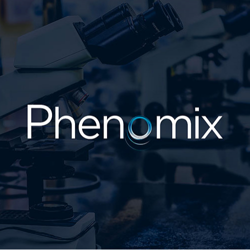 Phenomix logo design