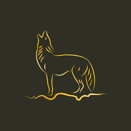 gold coyote