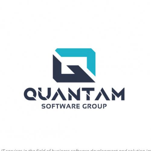 IT/Software Firm Logo