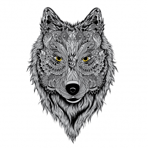Wolf pattern illustration