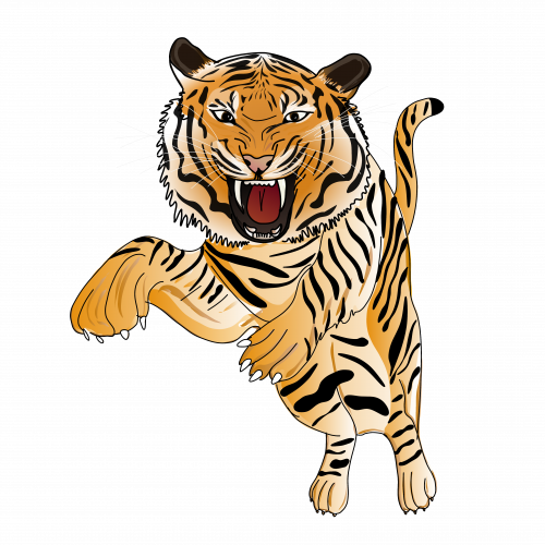 Tiger attack (Fabuleuseplanete biodiversity artwork)