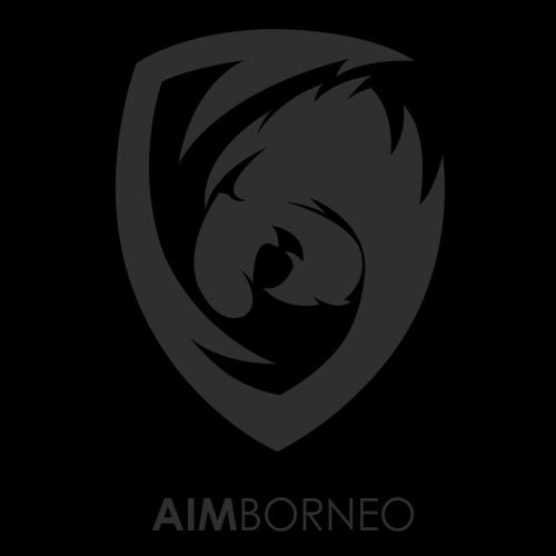AIM Borneo Esports