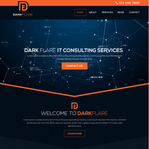 Dark Flare: IT Consulting Services