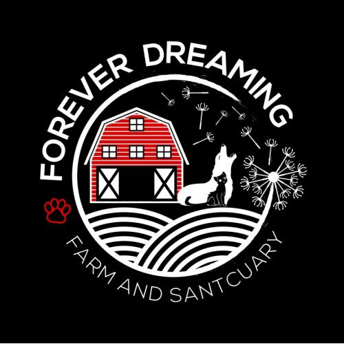 Forefer Dreaming