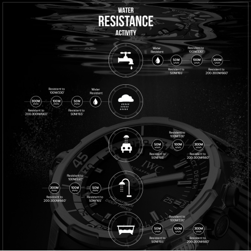 Infographic - Rose The Watch Bar