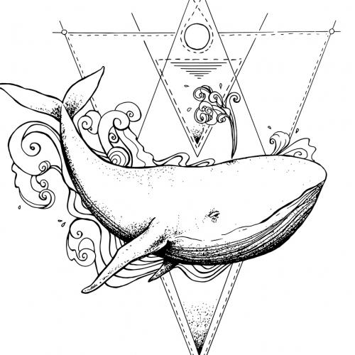 Geo Whale