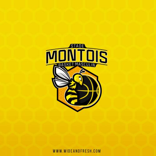 Stade Montois Basket