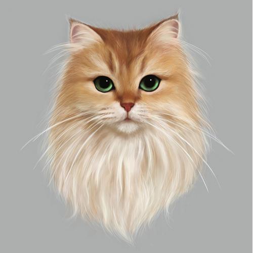 Cat portrait digital painting