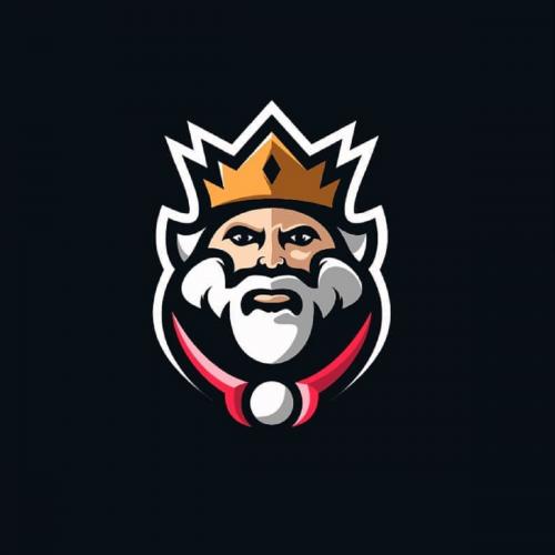 Logo Design Custom