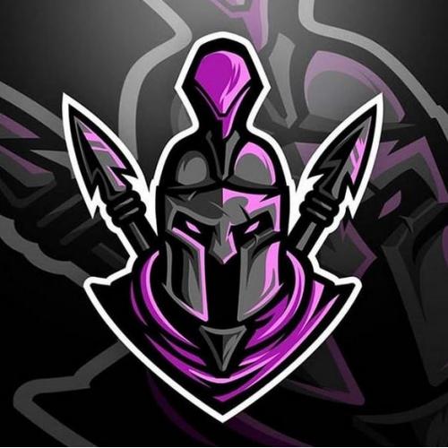 Custom Logo (Ninja)