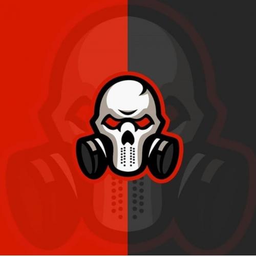 Custom Logo (skull)