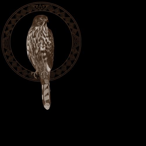 Hawk with Hopi Design