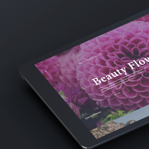 Website design for Ipad