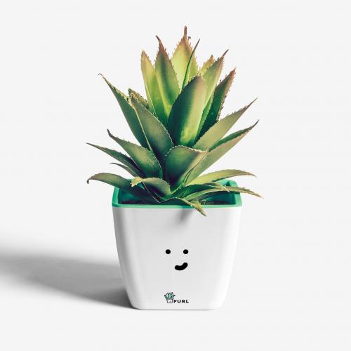 Plant Pot Design Concept for FURL
