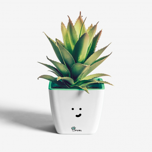 Plant Pot Design Concept for FURL